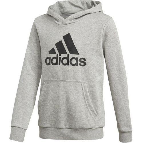 Bluza z kapturem adidas Essentials Logo DJ1752, z
