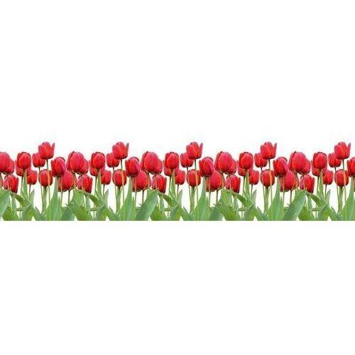 tablica suchościeralna 01X 073 czerwone tulipany