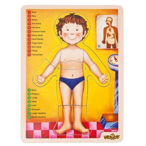Woody puzzle -ludzkie ciało