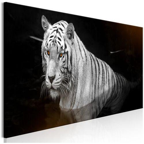 Obraz - lśniący tygrys (1-częściowy) pomarańczowy wąski marki Artgeist