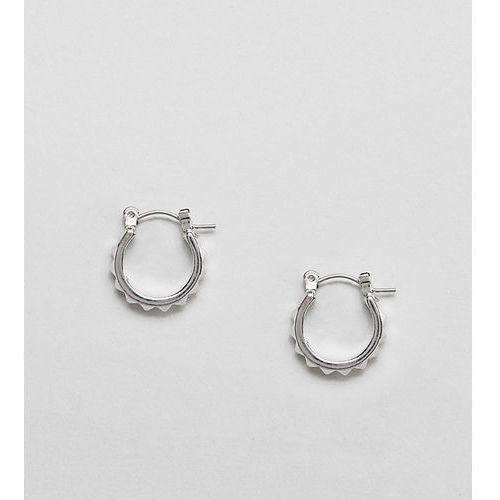 Sacred Hawk horseshoe earrings - Silver, kolor szary