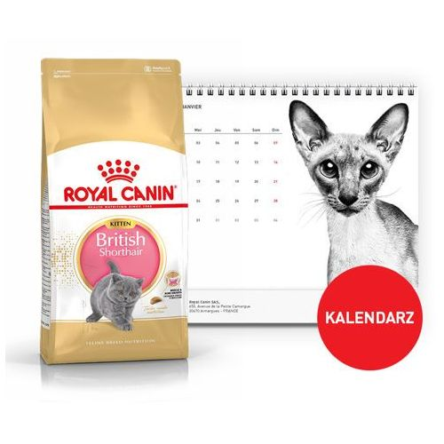 royal canin kitten british shorthair 2kg kalendarz 2018 royal canin por wnywarka w interia. Black Bedroom Furniture Sets. Home Design Ideas