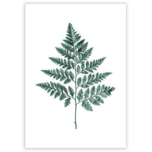 plakat fern emerald green, 30 x 40 cm marki Dekoria