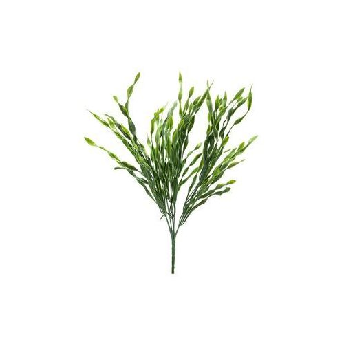 Black red white Gałązka trawy