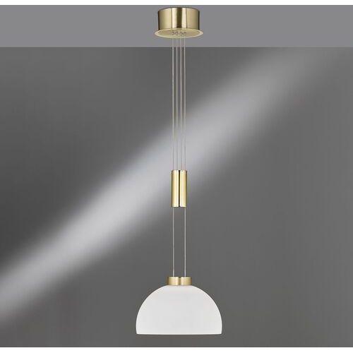 Fischer&honsel gmbh Szklany klosz, lampa wisząca shine led, 1-punktowa (4003694601924)