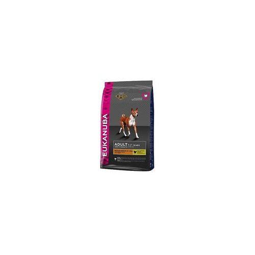 Małe opakowanie Eukanuba + 8in1 Fillets Pro Active, S, 80 g gratis! - Adult Medium Breed, kurczak, 3 kg, 155 (5183175)