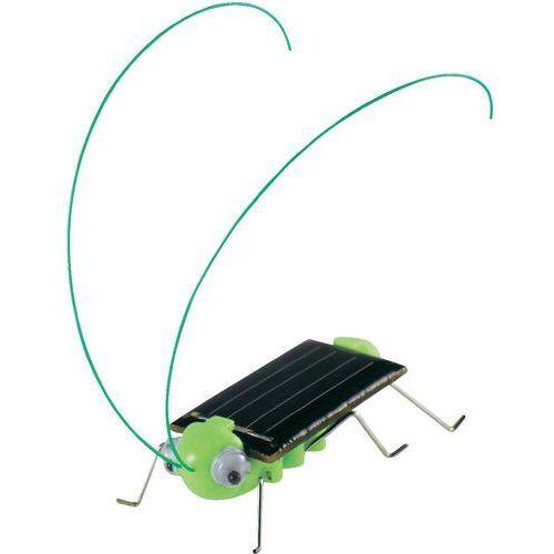 Zabawka solarna - owad Sol Expert 46125, (dł. x szer. x wys. ) 50 x 20 x 20 mm