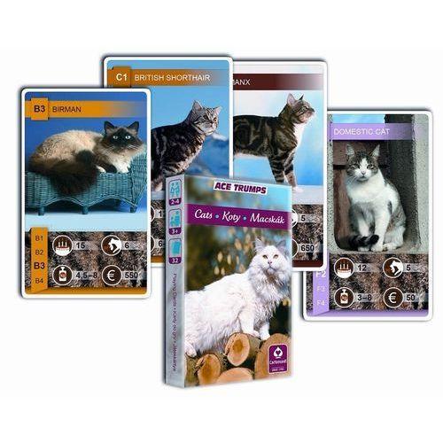 Cartamundi Kwartet - koty. karty do gry  (5901911002150)