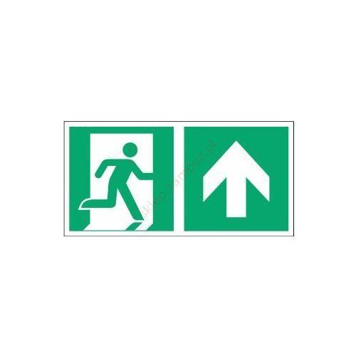 Znak kierunek do wyjścia ewak. strz. w górę e02-gg marki Techem