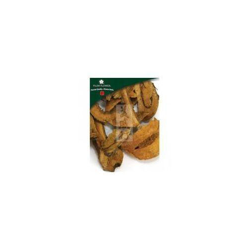 Rdest Japoński (Japanese knotweed) cięty (500g)