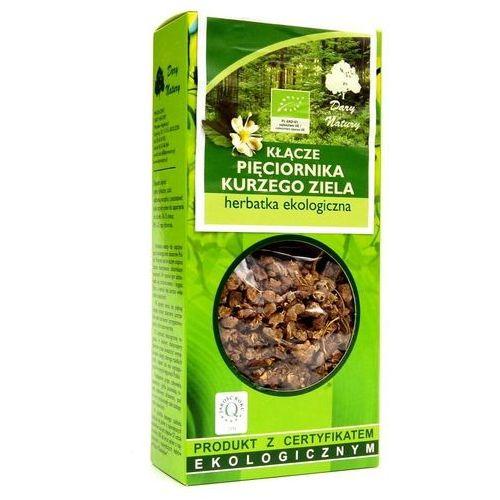 Dary natury - test Herbatka z kłącza pięciornika kurzego ziela bio 100 g - dary natury