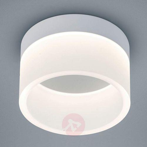 Helestra Liv Lampa sufitowa LED Siwy, 1-punktowy - Nowoczesny - Obszar wewnętrzny - Liv - Czas dostawy: od 6-10 dni roboczych
