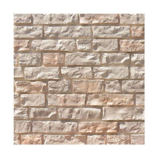 Kamień dekoracyjny CASA 43 x 12 cm AKADEMIA KAMIENIA (5901138227213)