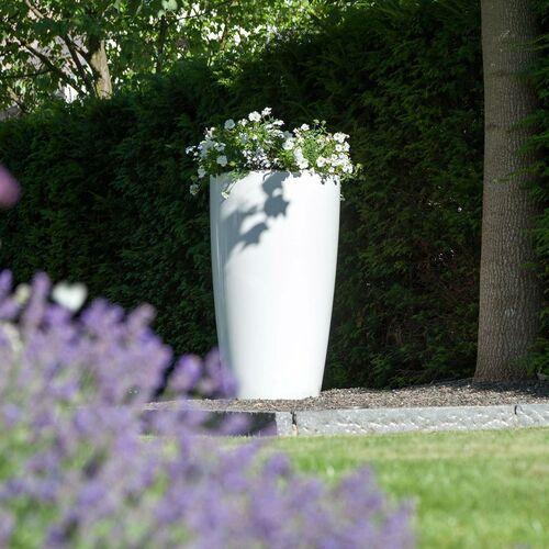 Lampa dekoracyjna rovio iii donica rgb biała marki Degardo