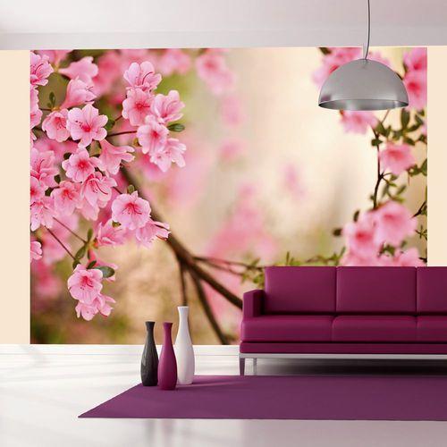 Murando Fototapeta pink azalea 100406-117 outlet