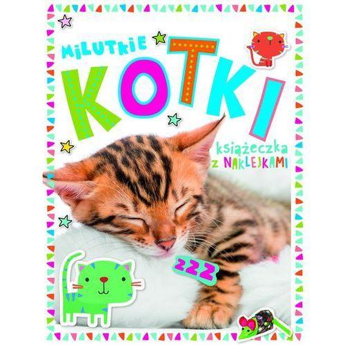 Praca zbiorowa Milutkie kotki książeczka z 250 naklejkami- bezpłatny odbiór zamówień w krakowie (płatność gotówką lub kartą).