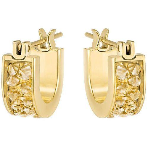 Swarovski Crystaldust Hoop Pierced Earrings, Small, Gold Tone Brown Gold-plated, kup u jednego z partnerów