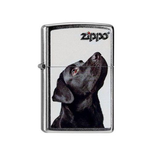 Zapalniczka Zippo Pies