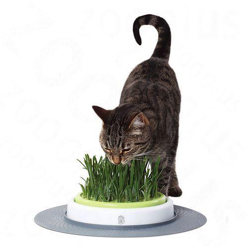 Hagen Catit senses miska z trawą ogrodową - zestaw Ø 24 cm| -5% rabat dla nowych klientów| darmowa dostawa od 99 zł
