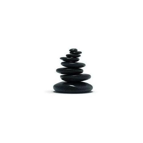 Gorące kamienie do masażu SPA