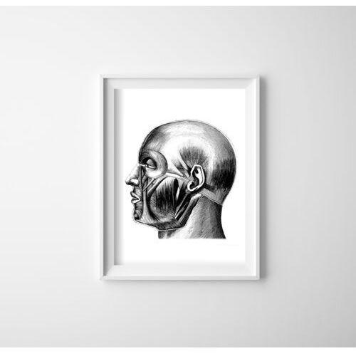 Plakat w stylu retro Plakat w stylu retro Anatomiczne odciski Mięśnie głowy