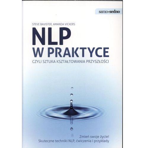 NLP w praktyce Samo sedno (2010)