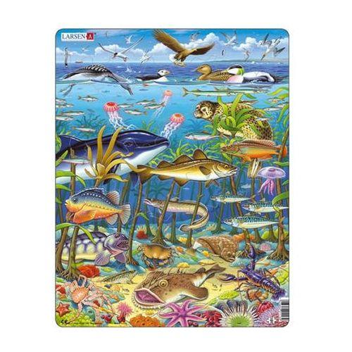 Neuveden Puzzle maxi - zvířata v moři/60 dílků
