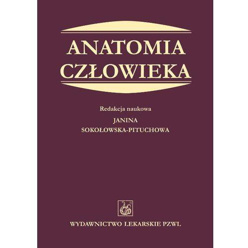 Anatomia człowieka (ISBN 9788320043648)