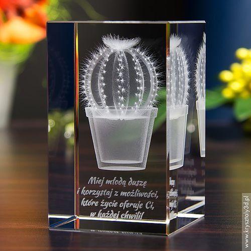 Kaktus kulka 3D • personalizowany kryształ 3D • GRAWER 3D