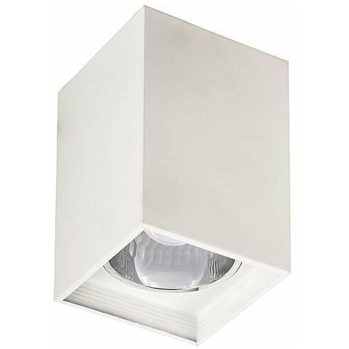 Rabalux Plafon lampa sufitowa spot maddox 1x60w e27 biały 2486 (5998250324869)