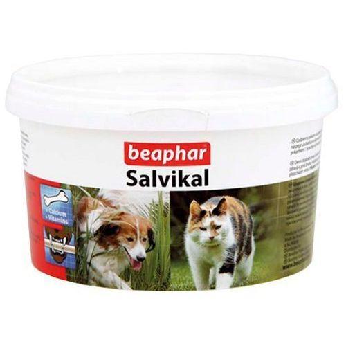Beaphar Salvikal - preparat mineralno-witaminowy z drożdżami 250g (8711231136223)
