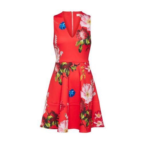 Ted Baker Sukienka 'Kinle' mieszane kolory / czerwony, w 5 rozmiarach