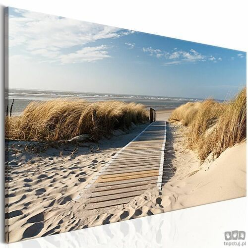 Obraz dzika plaża marki Artgeist