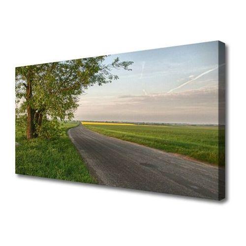Tulup.pl Obraz na płótnie droga drzewo trawa krajobraz