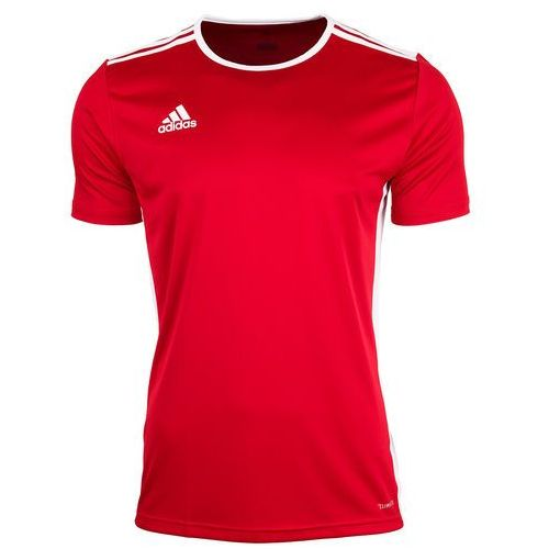 Adidas koszulka męska t-shirt entrada 18 cf1038