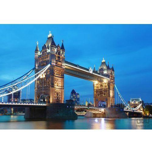 Wizard + genius Fototapeta london tower bridge 959