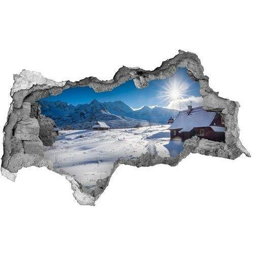 Dziura 3d w ścianie naklejka Hale Tatry