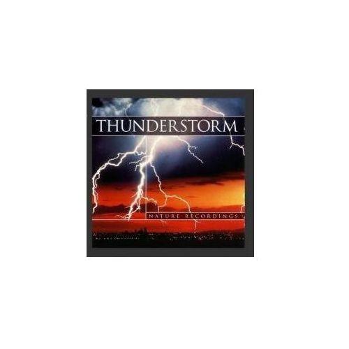 Thunderstorm (PC)
