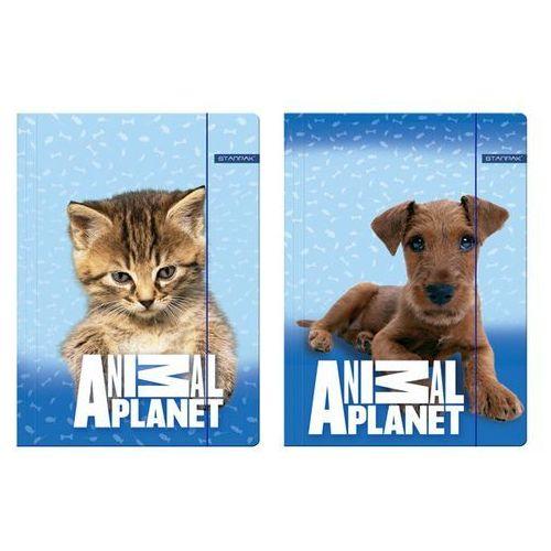 Starpak Teczka z gumką a4 animal planet cute (5907604668559)