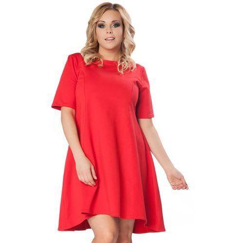 Czerwona Rozkloszowana Sukienka z Wydłużonym Tyłem PLUS SIZE, w 2 rozmiarach