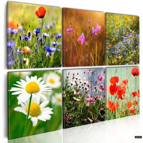 Selsey obraz - łąka tysiąca kolorów 120x80 cm (5902622539614)