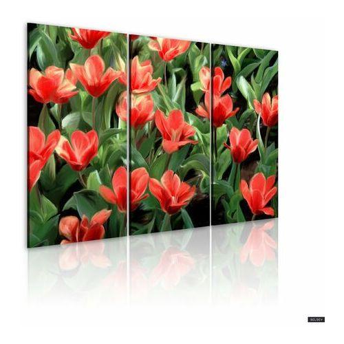 Selsey obraz - czerwone tulipany w rozkwicie 120x80 cm (5902622539874)