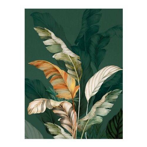 Obraz Canvas Botanic Green 60 x 80 cm, ST554