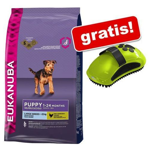 Eukanuba Duże opakowanie  + furminator zgrzebło gratis! -eukanuba adult large breed, jagnięcina i ryż, 12 kg