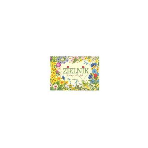 Zielnik Kwiaty pól i łąk (9788321343907)