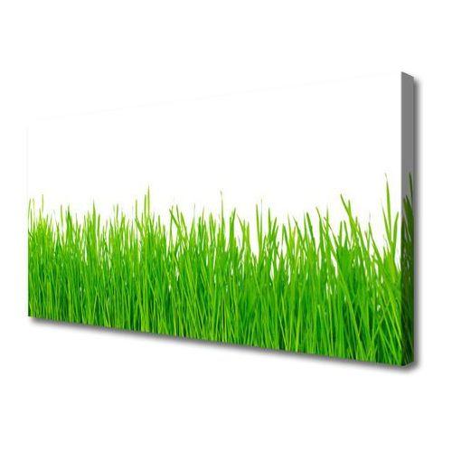 Obraz canvas trawa roślina natura marki Tulup.pl