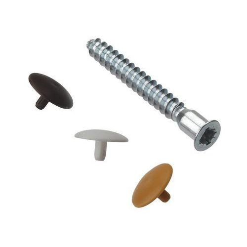 Śruba meblowa DIREKTA M5 x 50 mm 16 szt. HETTICH (4008057893312)