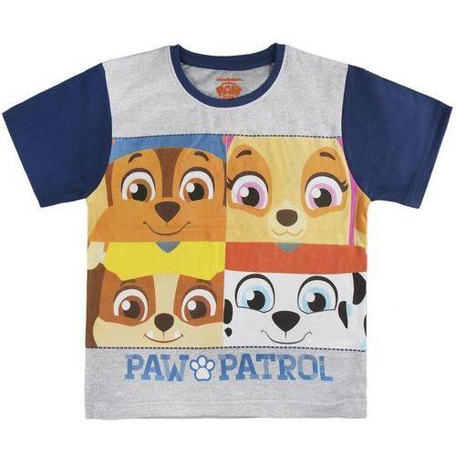e24a23eb660160 Disney koszulka chłopięca Paw Patrol 104 szary/niebieski, kolor niebieski
