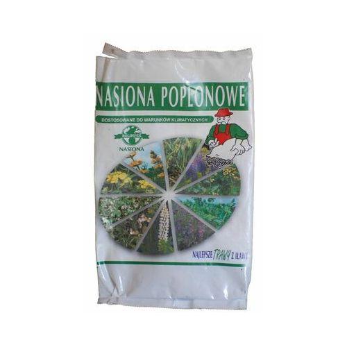 Najlepsze trawy z iławy Gorczyca biała - nasiona poplonowe tradycyjne 1000 g