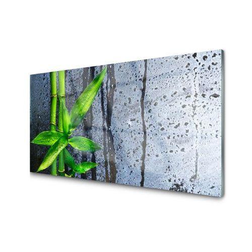 Obraz Akrylowy Bambus Liść Roślina Przyroda